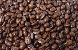コーヒー豆の写真素材 [FYI00404479]