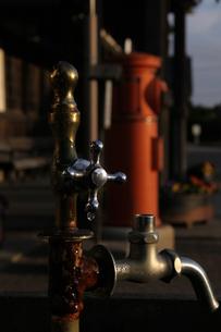 夕日に照らされる水のみ蛇口の写真素材 [FYI00404771]