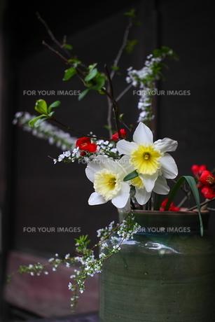 玄関先の生け花の写真素材 [FYI00404775]