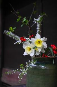 玄関先の生け花の素材 [FYI00404775]