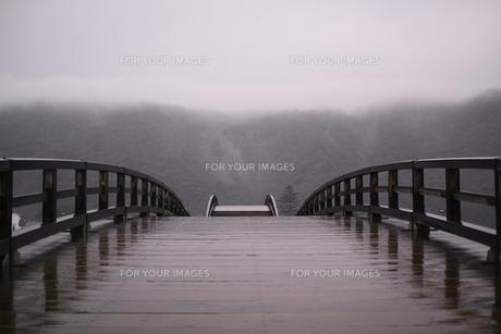 雨の錦帯橋の素材 [FYI00404785]