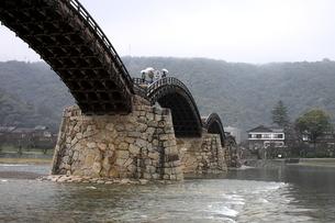 雨の錦帯橋の素材 [FYI00404793]