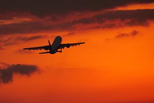 飛行機の写真素材 [FYI00405173]