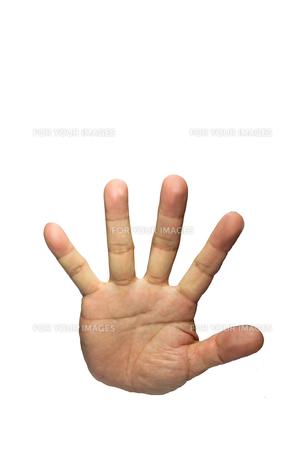 手の平の素材 [FYI00405267]