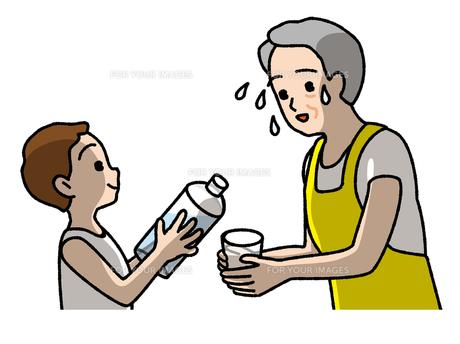 水分補給の素材 [FYI00405650]