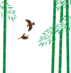 雪持ち竹と雀の写真素材 [FYI00405947]
