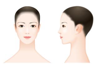 女性の顔の写真素材 [FYI00405950]