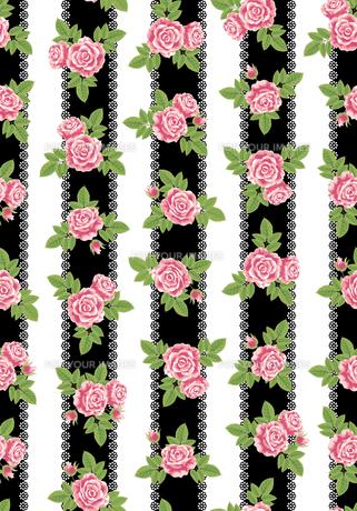 薔薇の素材 [FYI00405961]