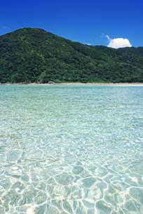 澄んだ海の写真素材 [FYI00405962]