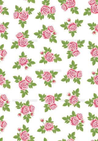 薔薇の壁紙の素材 [FYI00405966]