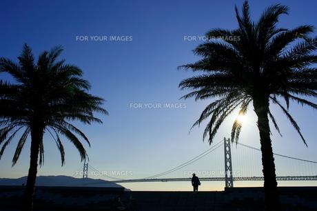 明石海峡大橋の写真素材 [FYI00405979]