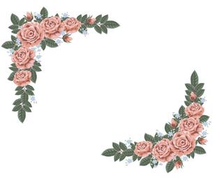 クラシックな薔薇の枠の写真素材 [FYI00405998]