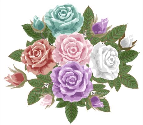 薔薇の素材 [FYI00406005]
