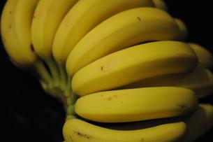 バナナの写真素材 [FYI00407174]