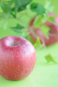 リンゴの写真素材 [FYI00407259]