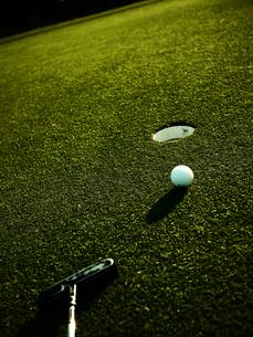 グリーン上のパターとボール1の写真素材 [FYI00407533]