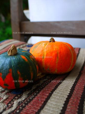 かぼちゃ2個1の写真素材 [FYI00407557]