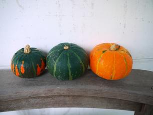 かぼちゃ3個1の写真素材 [FYI00407564]