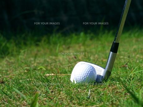 ゴルフボールとアイアンの写真素材 [FYI00407911]