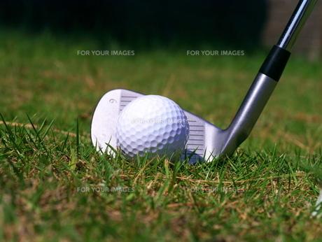 ゴルフボールとアイアンの写真素材 [FYI00407915]