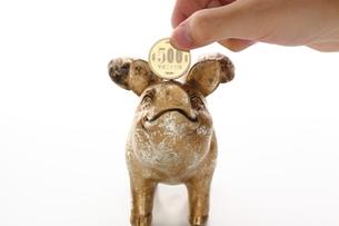 金色のブタと500円の写真素材 [FYI00407952]