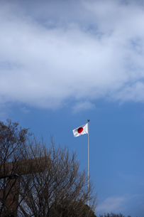 国旗の写真素材 [FYI00408111]