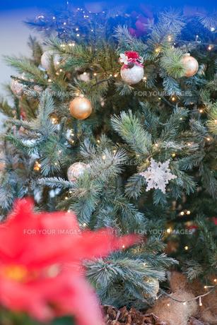 クリスマスリースの写真素材 [FYI00408127]