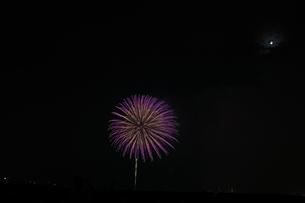 花火の写真素材 [FYI00408146]