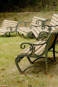 公園のベンチの写真素材 [FYI00410785]