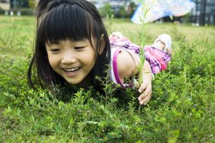 草原に寝転ぶ女の子の写真素材 [FYI00410793]