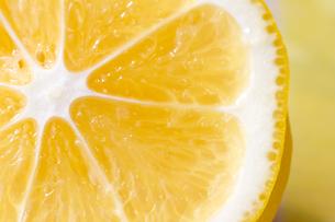 レモンの写真素材 [FYI00411041]