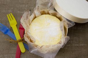 チーズケーキの写真素材 [FYI00411273]