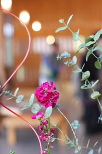 生け花の写真素材 [FYI00411742]