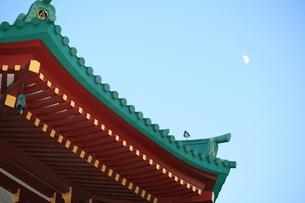 月と弁天堂 上野不忍池の写真素材 [FYI00411814]