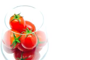 あまえるトマトの写真素材 [FYI00411820]