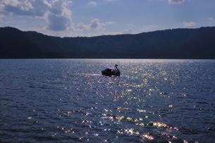 十和田湖とスワンボートの写真素材 [FYI00411857]