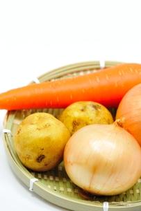 野菜の写真素材 [FYI00411984]