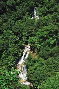 霧降の滝の写真素材 [FYI00412009]