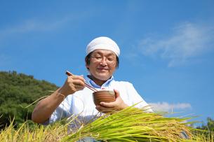 農業 豊作 米 ライス 食べる 日本人の写真素材 [FYI00412111]