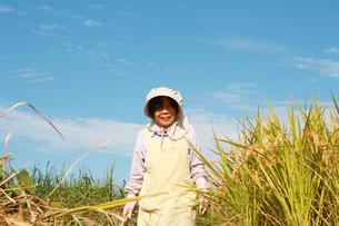 笑顔で農業をするシニア女性の写真の写真素材 [FYI00412133]
