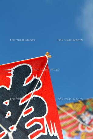お正月の遊び龍の和凧と空の写真の写真素材 [FYI00412135]