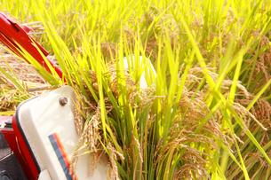 日本の農業コンバインで稲刈りの写真の写真素材 [FYI00412137]