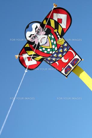 お正月新春のやっこ凧の写真の写真素材 [FYI00412213]