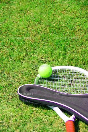 芝生とテニスラケットとボールの写真の写真素材 [FYI00412234]