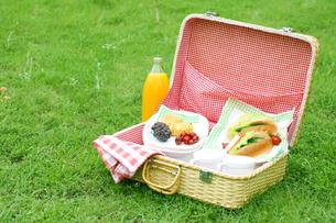 公園に置くバスケットの食べ物の写真の写真素材 [FYI00412241]