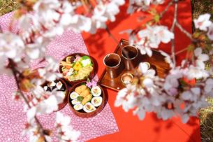 お花見弁当三段重箱とソメイヨシノの写真の写真素材 [FYI00412257]