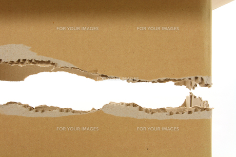 横に破断して破れた段ボールの写真の写真素材 [FYI00412298]
