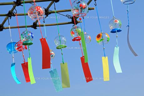 風鈴屋のガラスのカラフル風鈴 横の写真の素材 [FYI00412355]