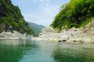 吉野川 大歩危峡の川の風景の写真の写真素材 [FYI00412356]