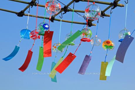 日本の祭り ガラス風鈴屋の軒先の写真の素材 [FYI00412360]